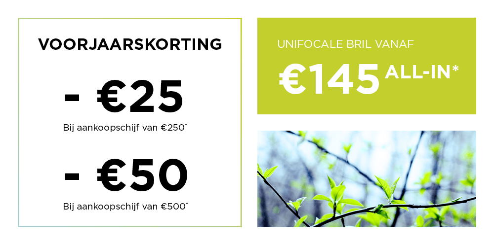 BRILART_VOORJAARSKORTING_WEBSITE.png